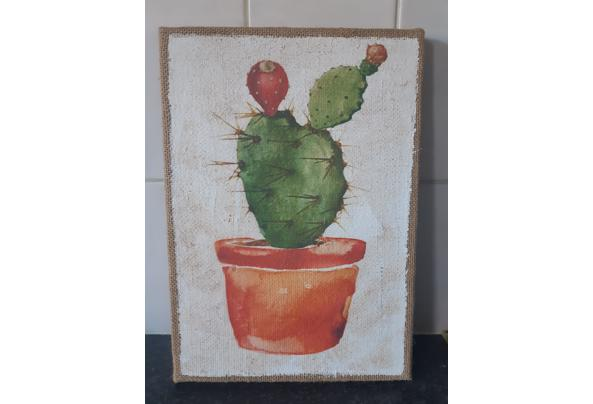 Cactus Prints  - 16149321085126991085558029730403