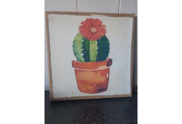 Cactus Prints  - 16149321653353341360122319958528