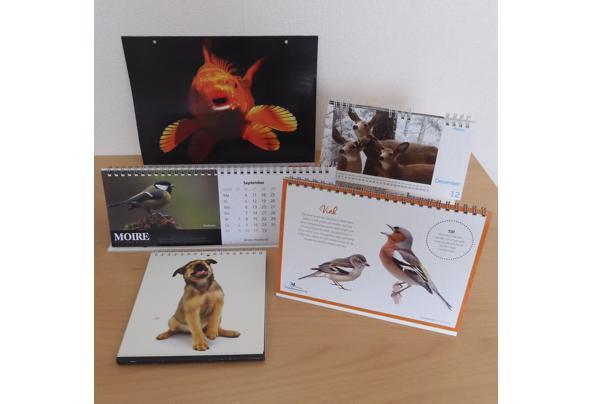 Dieren spulletjes (zoals posters en kaarten) - DSCN0167_637581837756274060