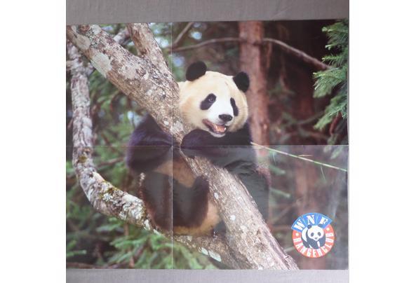 Dieren spulletjes (zoals posters en kaarten) - DSCN0403_637581837449937857