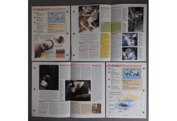 Dieren spulletjes (zoals posters en kaarten) - DSCN0406_637581837624651960