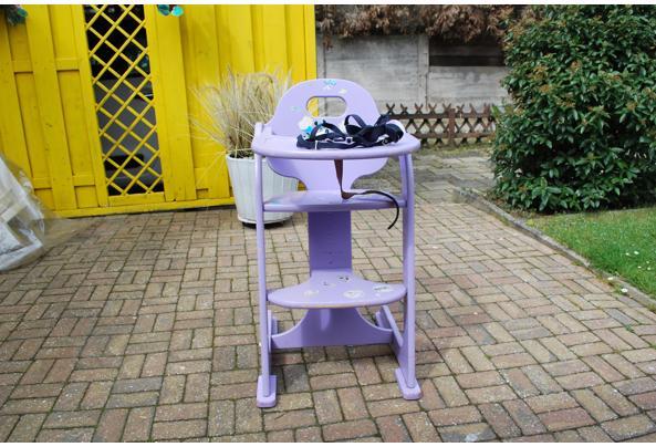 kinder stoel met tuigje - DSC_5158