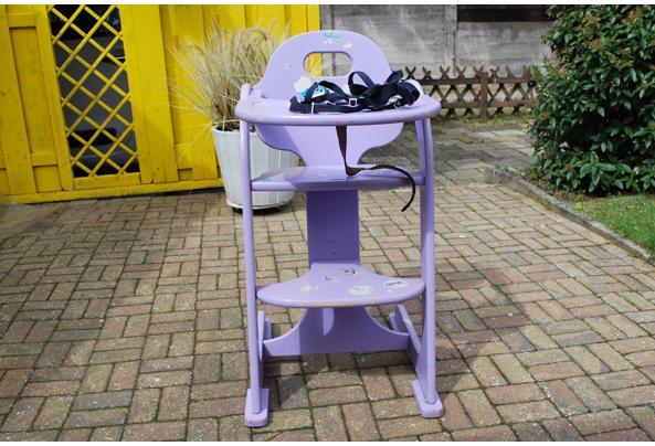 kinder stoel met tuigje - DSC_5159