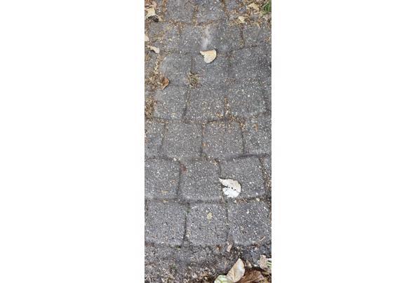 Stenen en tegels - 20210919_101722