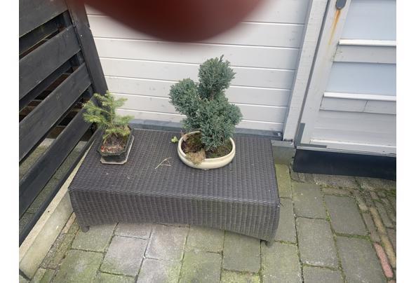 2 relax stoelen + tafeltje/voetenbank - A18621B8-F7FC-43B8-8E46-C9327141CC13