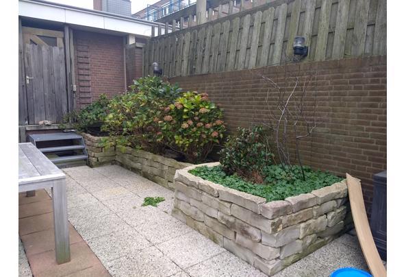 Mooie sierlijke stenen voor in de tuin - IMG_20201219_115947807
