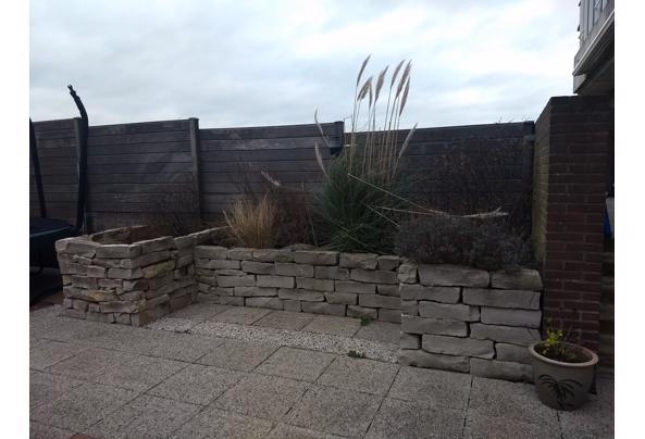Mooie sierlijke stenen voor in de tuin - IMG_20201219_120031951