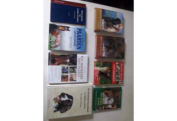Honden, paarden en katten Encyclopedie + glas in lood boek - 20210906_145356