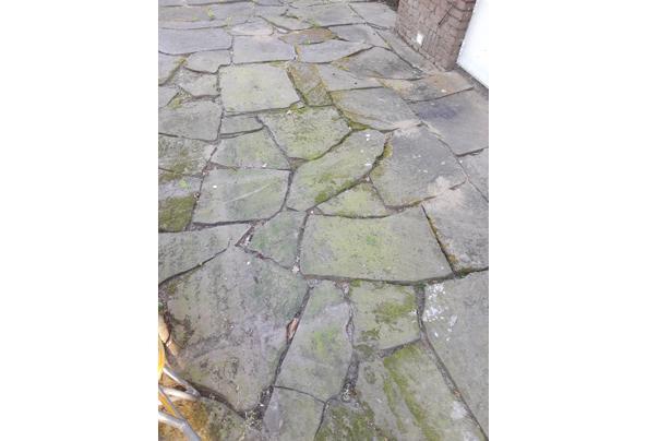 Flagstones - IMG_20210614_084550905