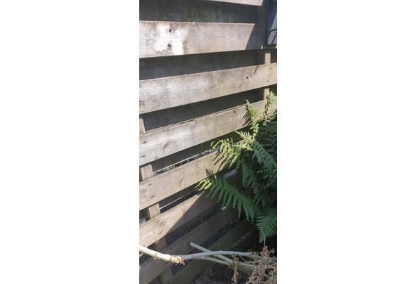 Planken schutting 14m  - 20210617_161801