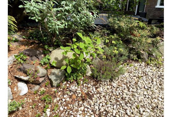 Grind, stenen, rotsen, lavastenen  - IMG_6424