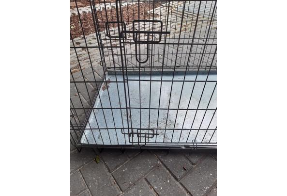 Honden Bench - 20210522_120734