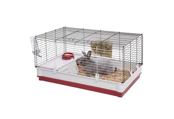 konijnenkooi - caviakooi - KOOI