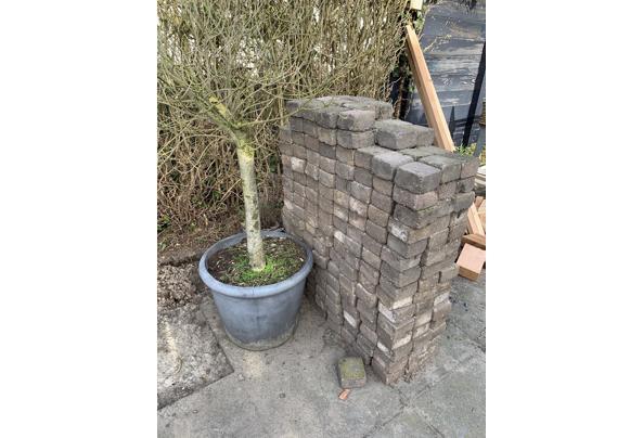 Tegels, klinkers en betonnen randen - AD580ECD-24A9-4480-A0B5-BFCBB4C88FE0