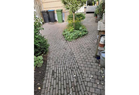 Maak een nieuwe tuin met deze bestrating - 20210822_185211