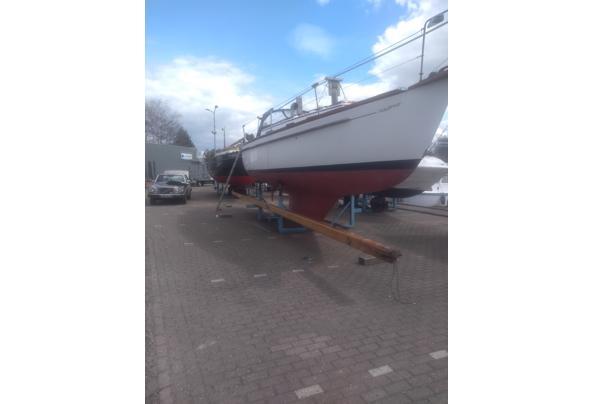 Houten mast - IMG_20210415_142646507