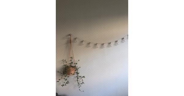 Rol behang