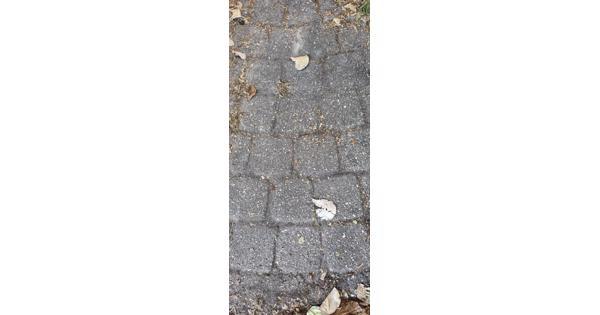 Stenen en tegels