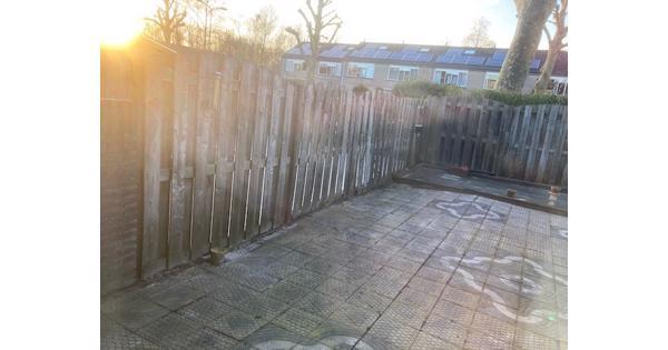 GRATIS tuintegels 30x30x2 ongeveer 38,5 m2 moet snel weg!