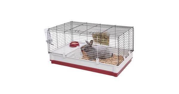 konijnenkooi - caviakooi